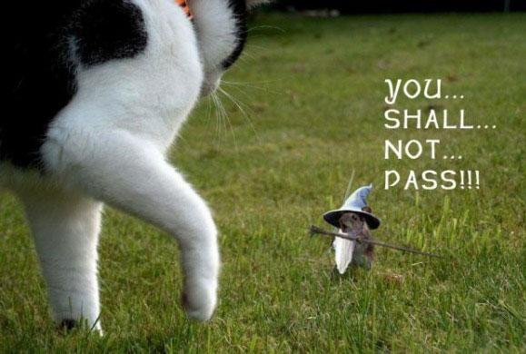 Thou Shalt Not Pass. Hmmm.. Maybe you can pass....