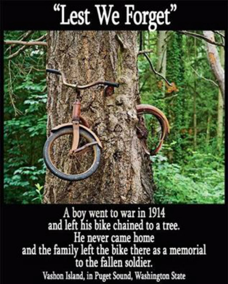 Thought this was pretty incredible. I feel a goosebumps, do you feel it?. A be went to war and left q bike chained to a tree, He new came home and the family le