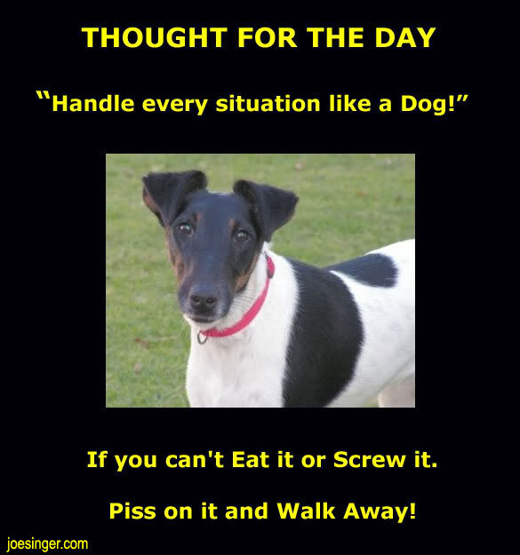 "Thought for the day. . THOUGHT FOR THE DAY Handle every situation like a Dog!"" If you can' t Eat it or Screw it. Piss an it and Walk Away!. i love to see that others have that lifestyle too =)"