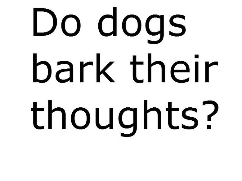 Thoughts. I was wondering this while I was in the can. Funnyjunk please help me answer this... I guess that would be one way to put it. Dogs bark for many different reasons, whether it's someone crossing on their territory or they're just hungry. So in a