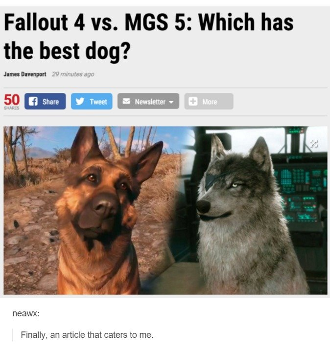 Thoughts. . Fallout 4 vs. MISS 5: Which has the best dog? Finally, an article that caters to me.. Dogmeat can bite people in the balls, that's a win in my book.