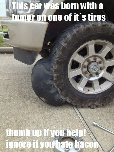Thousands of tires die each year. like and share if you also have tires!!!! OC captions. I I om with ff' nu: of in tins