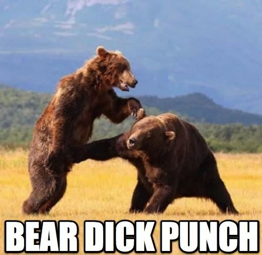 thumb up bear punch. you have been visited by the bear dick punch, thumb this up in 5 seconds or you wont get punched in the dick by a bear and we all know you