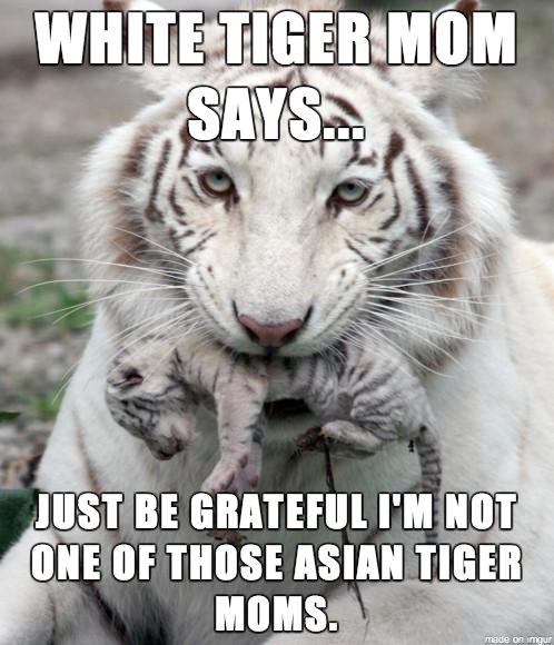 Tiger Mum. Source: Imgur. If A g. white tiger mum looks stoned