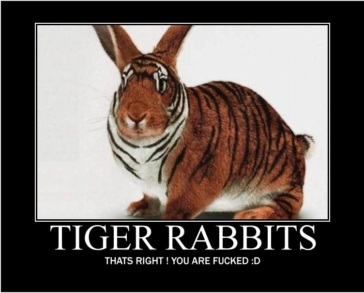 TIGER RABBITS. My first post, this came to mind, enjoy. and thumb if you laughed or thought this was some funny shiyt. THATS RIGHT l YOU ARE FUCKED in. 2