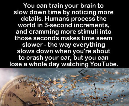 Time. . You can train your brain to slow down time by noticing more details. Humans process the world in increments, and cramming more stimuli into those second