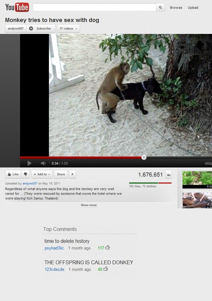 time to delete history. found while browsing the `weird` part of youtube. lhm Itle' tll it Erease Uppload Monkey tries to have sex with dog ill, Subscribe ' v R
