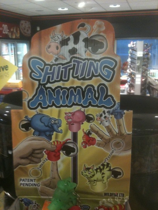 ting Animals. ....
