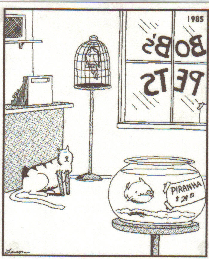 title. description.. Gary Larson..I know because before i got Firefox i read. Its like TV in ur brain