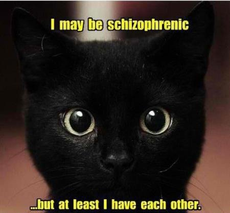 Title. . laut at least I have each othar. ti....... Schizophrenia is not the same as Dissociative Identity Disorder. At any rate, ADHD would probably describe the actions of a cat more over than Schizophrenia.