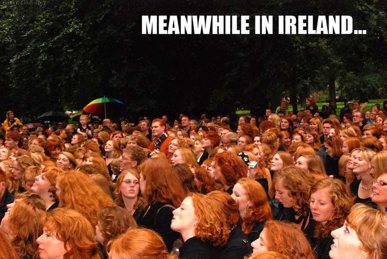 To funny. They can't be in Ireland... they are all sober !. MEANWHILLE IN .... More like, meanwhile at the weasley's family reunion