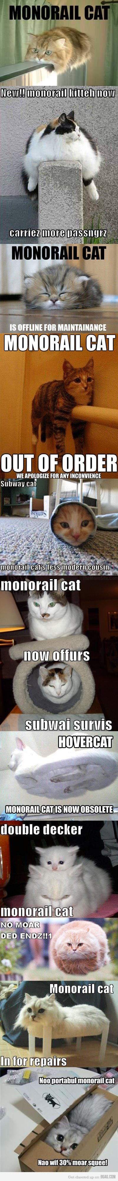 """to much kitteh. monorail cat takes over. carrier's""""'% Ii? Tss: Iur, z BAT BUT IIN' sf is cat rti, t"""
