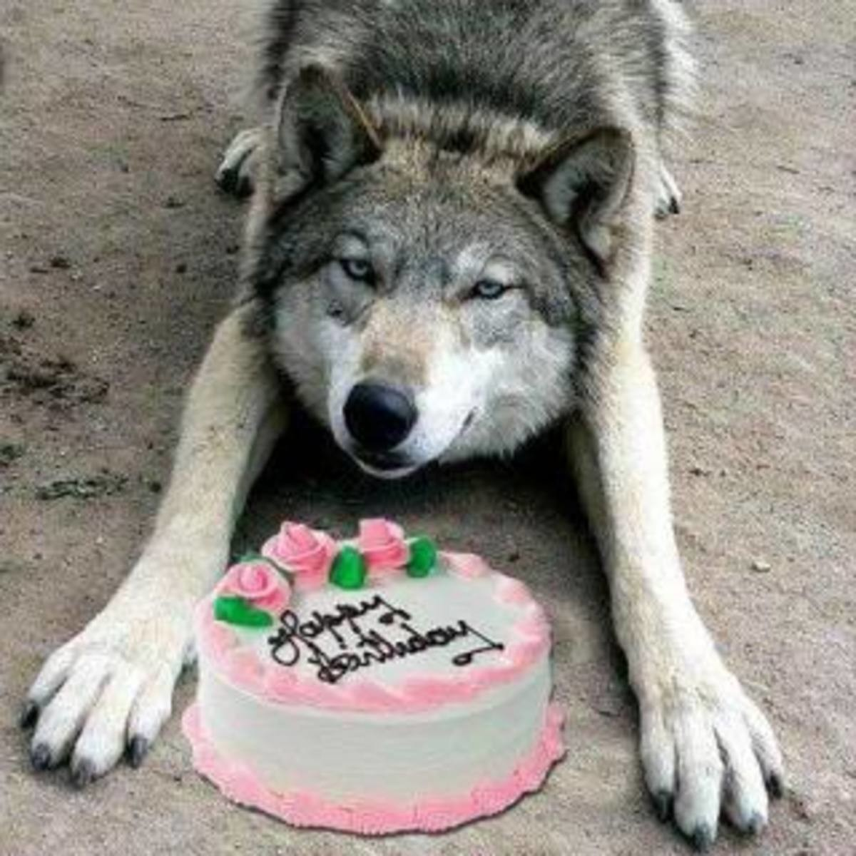 TODAY IS MAH B-DAY🎂. Today is my birthday fellow FJers, 9/19/1995 .. It's my birthday too! 9/19/1987 Happy birthday.