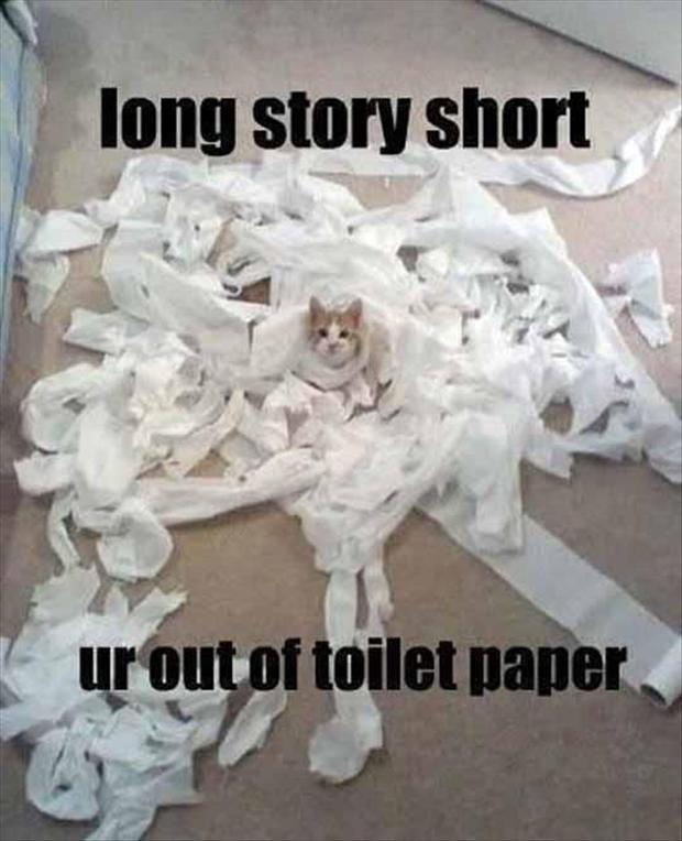 Toilet paper. Source: dumpaday.