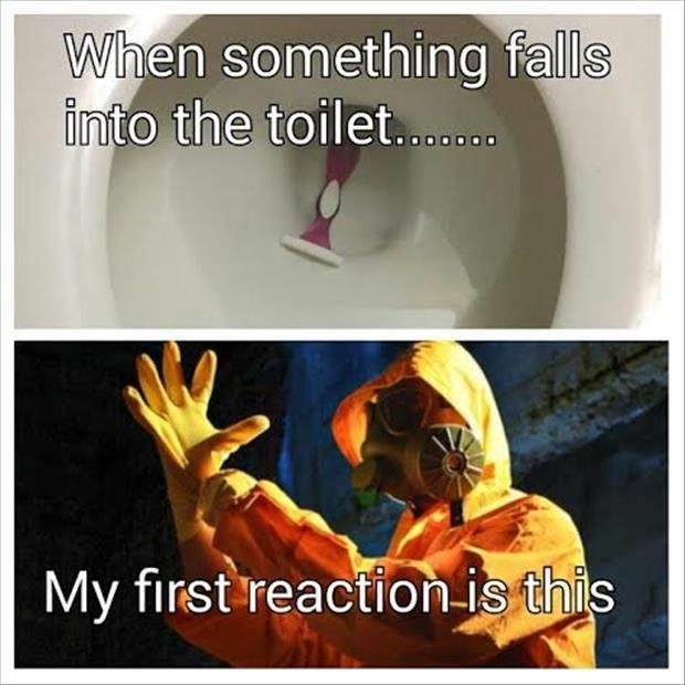 Toilet. Source: dumpaday. grits', something '' IN/ first 'reac? . ths