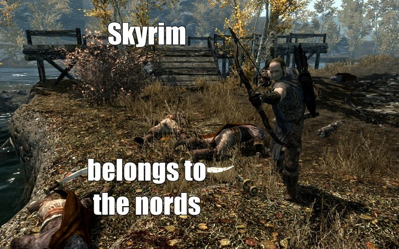 Too soon?. let the bodies hit the fjord.jpeg. ttis -. so a little story i start playing skyrim choose dark elf get freed choose stormcloak fight through everything help out leave a few imperial camps cause im not a
