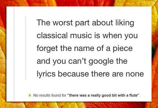 toodle lee toondoo laa. . The worst part about liking classical music is when you forget the name of a piece and you Can' t google the lyrics because there are