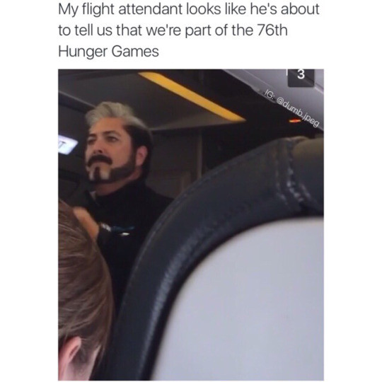 tribute. . My flight attendant looks like has about to tell US that we' re part at the 76th Hunger Games. I wish people would stop making fun of gays what if you were gay? how would you feel being critisized like that?