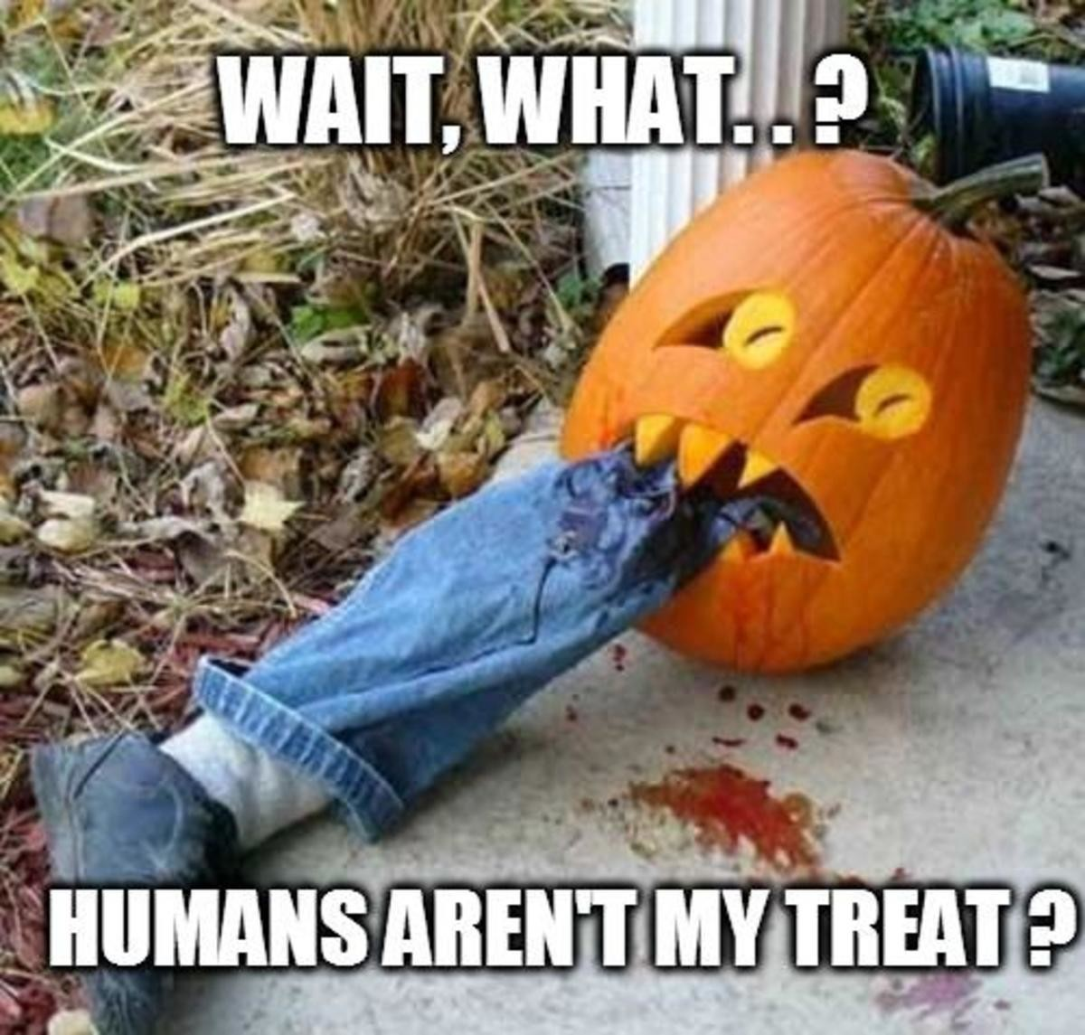Trick or Treat!. .. Why does the caption make this less funny?