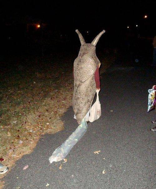 Trick or treating. .