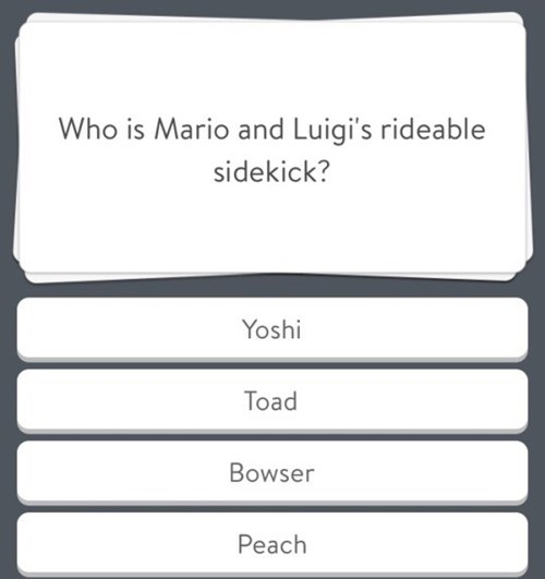 Trick Question?. . Who is Maria and Luigi' s rideable sidekick?. Who indeed.