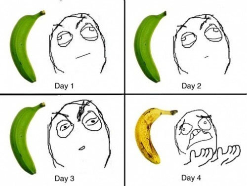 Troll Banana. .. i love them when they are brown and speckled :L