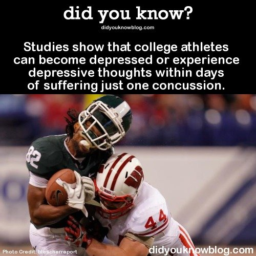 True Lies 2. source: imgur. did you know? d idgou k n . aern Studies show that college athletes can become depressed or experience depressive thoughts within da