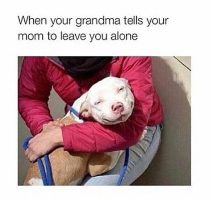 True. . When your grandma tells your mom to leave you alone. o hey i saw this like 2 days ago when Tommie Chong shared it on facebook.