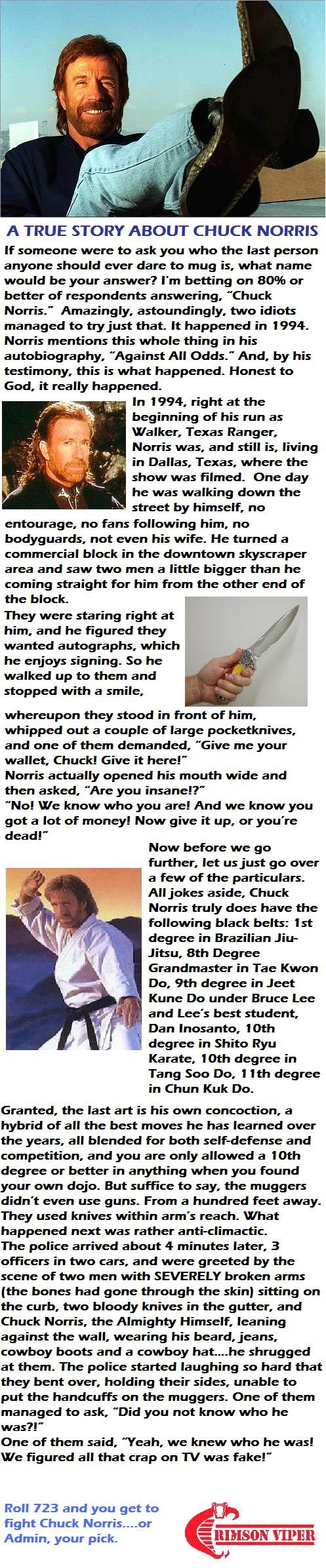"""TRUE Chuck Norris Story. Don't post a comment saying, """"Cool Story bro"""" or you're a fag. <br /> Here's where I found the story: <a hre"""