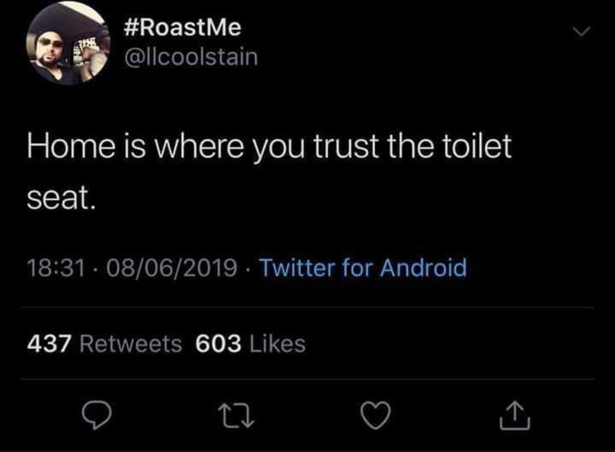 truer than you may realize. .. I don't trust my toilet seat. I keep forgetting to tighten it. I'm writing a note right now actually, to remind myself. been bugging me forever.