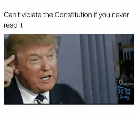 Truest of Memes. . Can' t violate the Constitution if you never read it