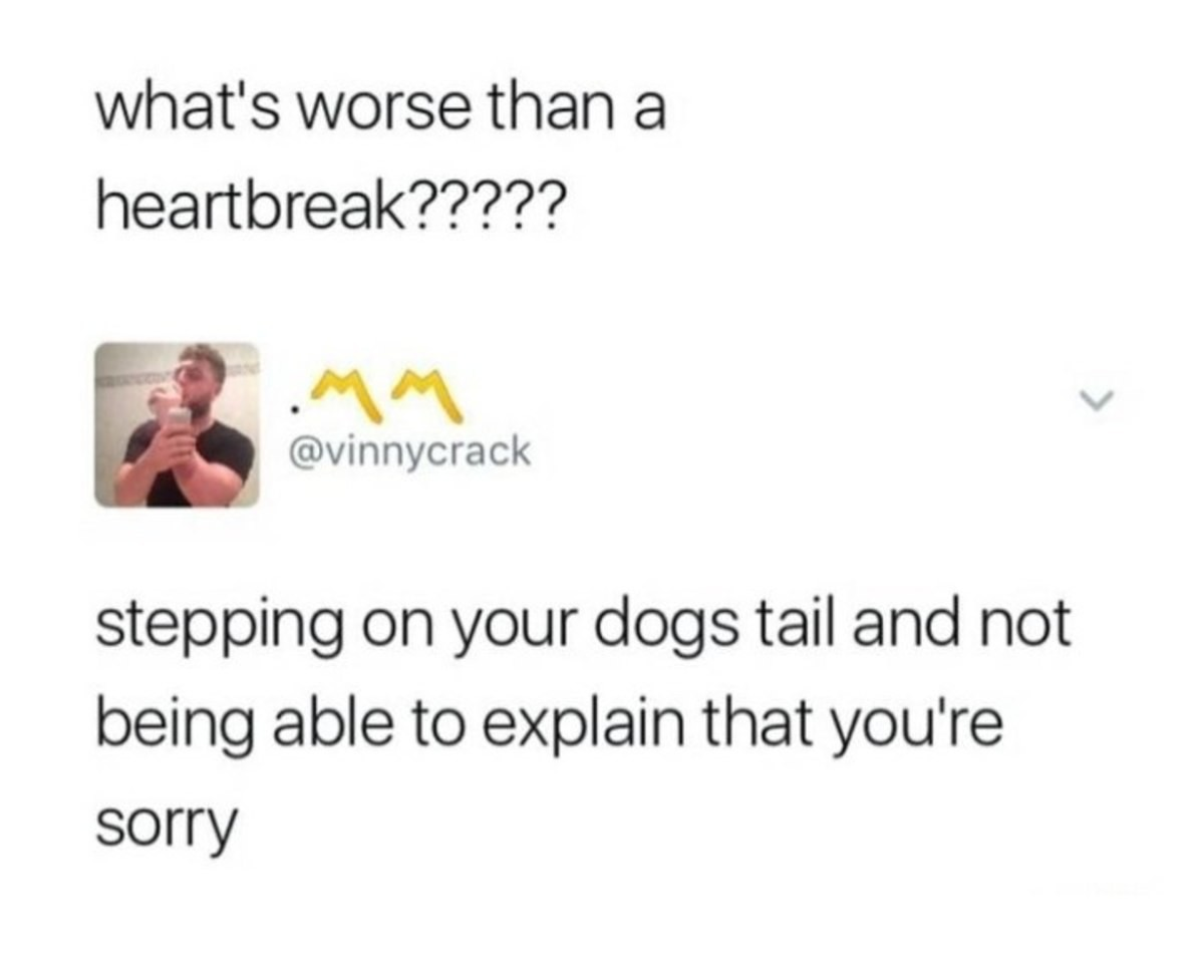 "Truth 2.0 (the nonfurry addition). .. Actually animals are able to understand accidents, dogs will lick there playmates and whine as an ""apology"" if they bite to hard or something. So if y"