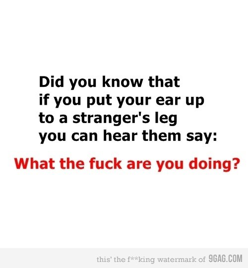 Try It. . Did you know that if you put your ear up to a stranger' s leg you can hear them say: What the fuck are you doing?