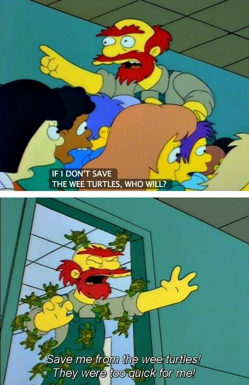Turtle Power. .. It must be that you are either the worlds biggest simpson fan or its just downright impossible for you to produce a thought that is even mildly original. Betwee