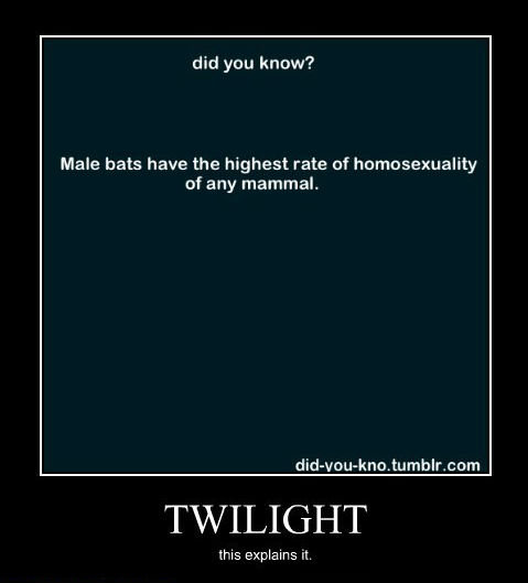 Twilight Explained. this makes so much sense. did you kittyy? Male hats have the highest rate of homosexuality of any mammal, tumblr. com TWILIGHT this explains