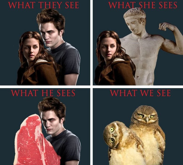 Twilight explained. You don't have to rate or comment, but please enjoy... Its already been posted .. just sayin -.- http://www.funnyjunk.com/funny_pictures/1316878/Twilight/