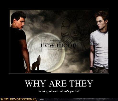 Twilight Explained.. BECAUSE THEY'RE GONNA SHAG.. NI/ HY ARE THEY looking at each Other' s paras'?. cuz edwards gay and since edwards gay jacob cant look him in the eyes