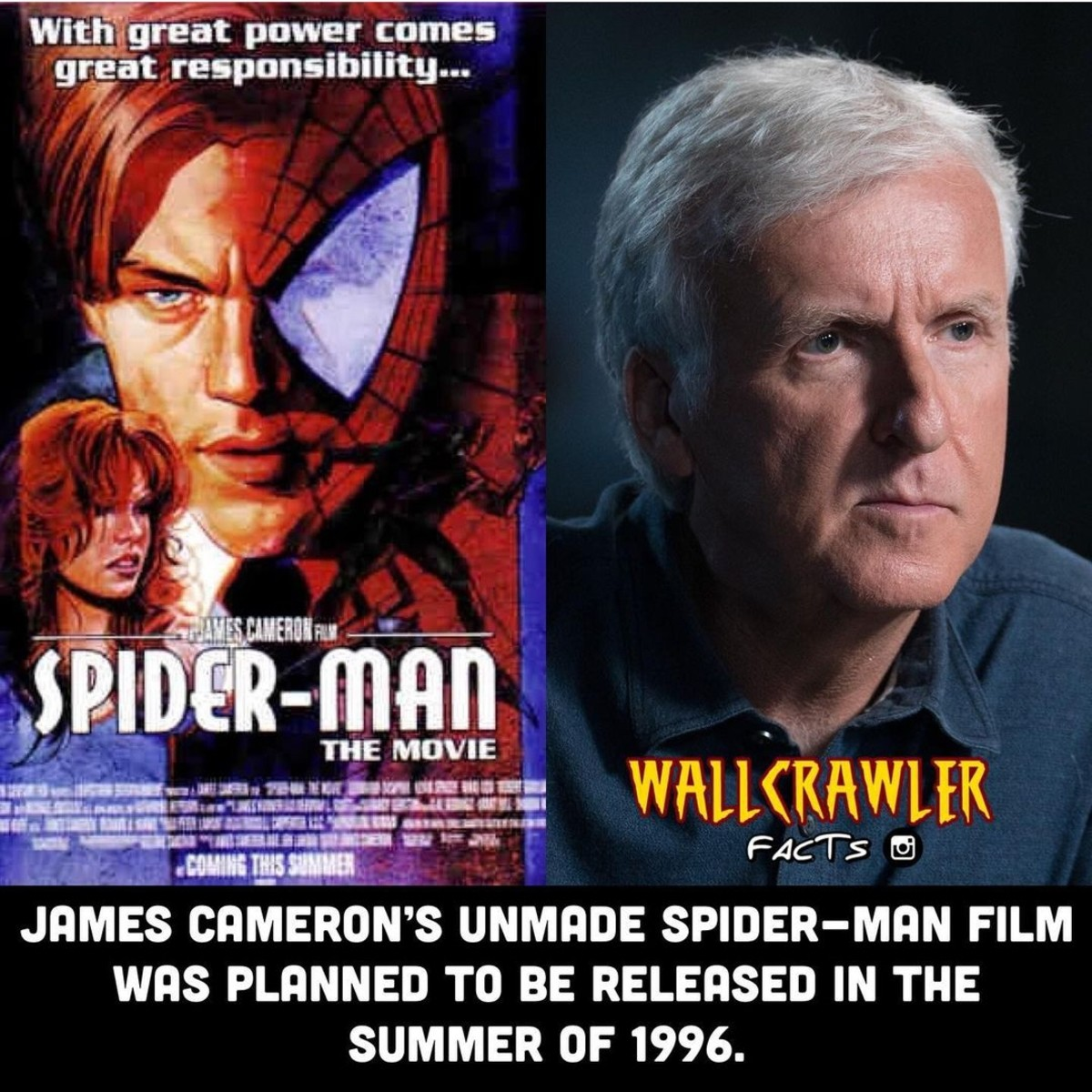 Unreleased Spider-Man Movie.. .. either that's leo in that movie cover, or the man depicted has aged 60 years instead of the natural 24 years that have passed...