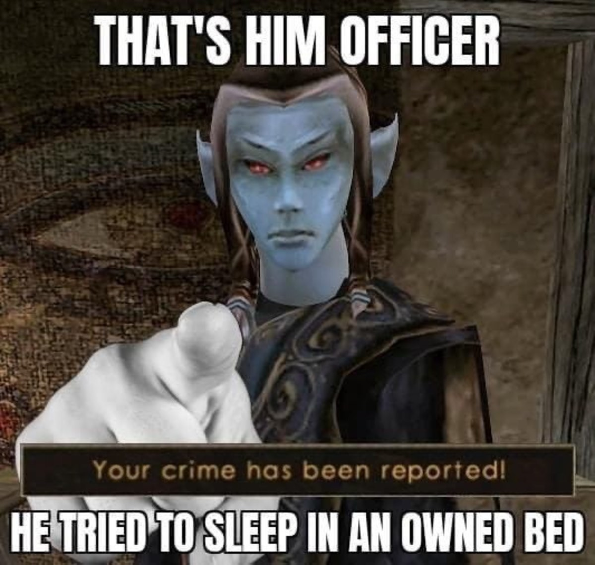 """unremitting minor Falcon. .. """"That's him, officer! I saw him steal my master's sweet roll!"""""""