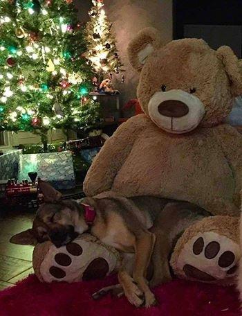 waiting for santa!. .