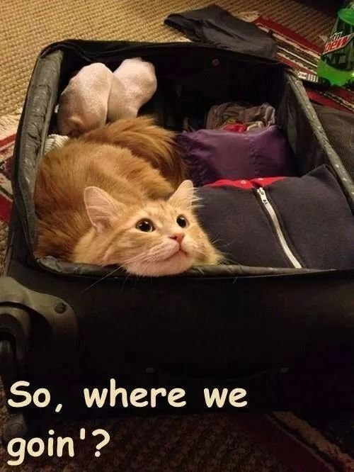 where we're going ??. . So, where we