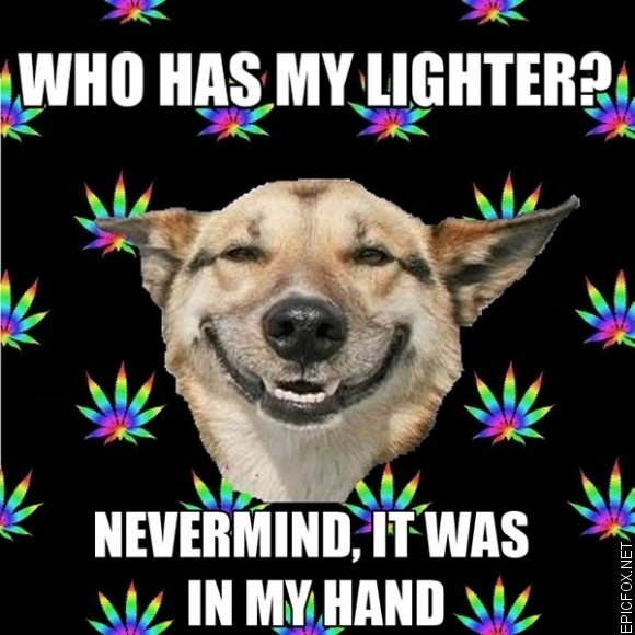 who has my lighter?. . an Adbprc att. My friend does this all the time, sometimes its in his pocket.