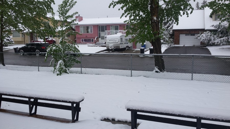 Why Canada?. woke up to this, Its the middle of May. Why? is my only question really. At least i still have my snow tires on i guess... I live in sweden. In the bible there was a flood that killed everything on earth, lasted for about 60 days and nights. In sweden we call it summer