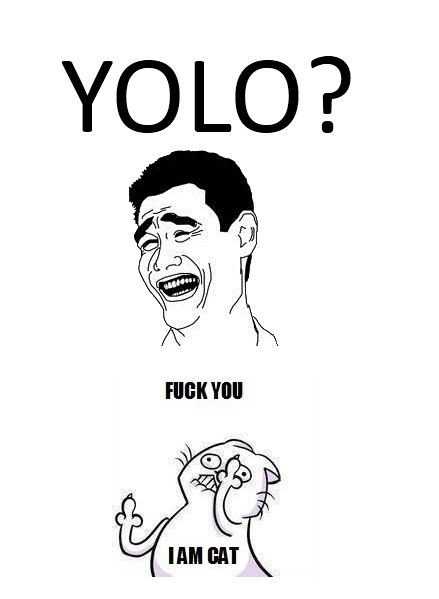 YOLO.. The cat knows where it's at. (Hope you guys get the joke..) Don't look at the tags! They're dressing!.