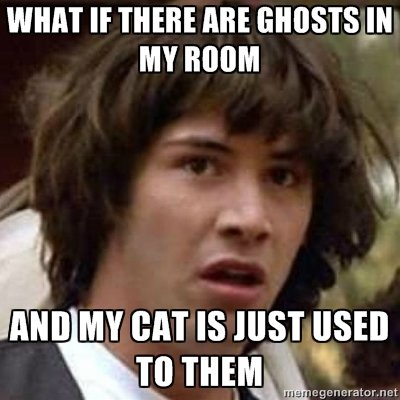 """You never know!. 100% all natural OC, no preservatives ready to get lost in the newest uploads, woohoo. WHAT IF THEHE ME GHOSTS """" MY HIHIHIH IS. JUST """"SEO. or maybe Your cat just doesn't give a ?"""