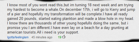 Youtube. . I know most of you wont read this, hut turning 18 next week and am trying my hardest to become a whale_ december Arth, i will go to Kerry and jump of