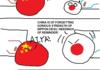 The Diaoyu/Senkaku dispute