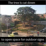 I don't know it is irony or stupidity